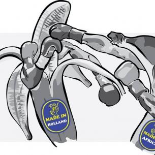 Bananen boksen (2010)
